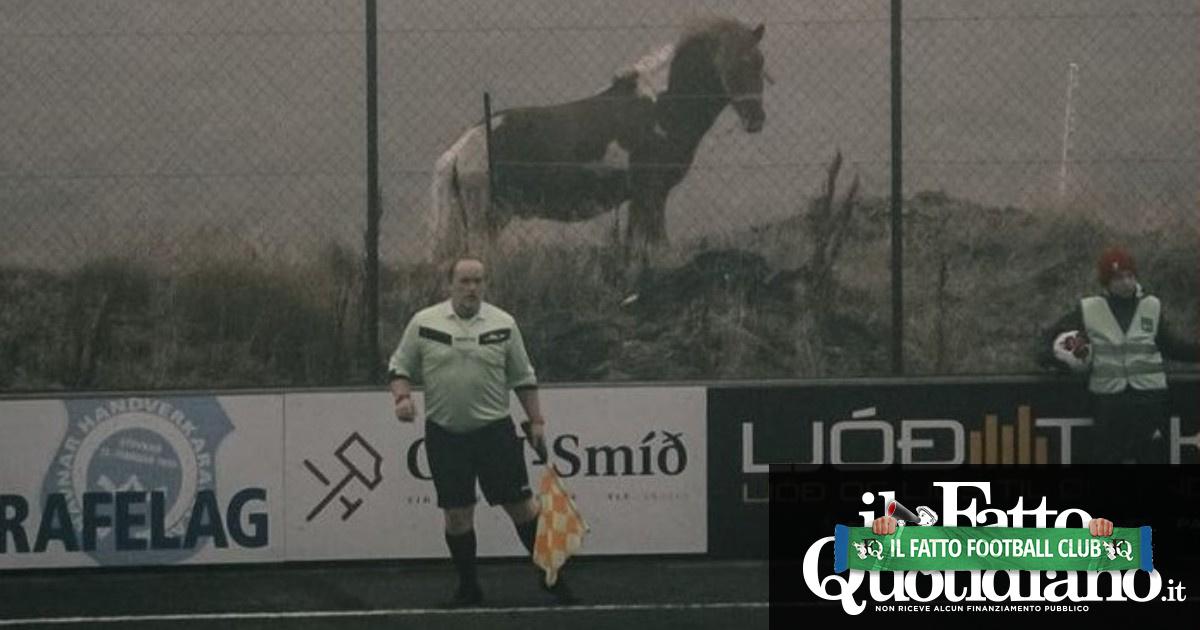 Domeniche bestiali – Chiede test antidoping per smascherare gli avversari: il suo compagno di squadra positivo alla cocaina