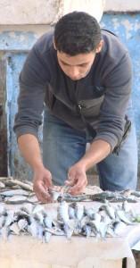 Un ragazzo al mercato del pesce