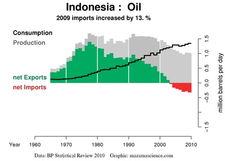 Il grafico dell'Export Land Model dell'Indonesia relativo al 2009