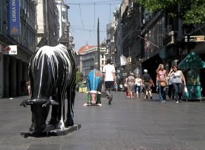 Mucche a Belgrado, foto di Federica Maietti