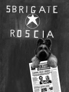 cane sequestrato