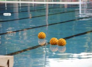 Bologna l 39 universit salva l 39 unica piscina olimpionica - Immobiliare grimaldi bologna ...