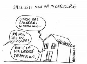 Natangelo su Sallusti
