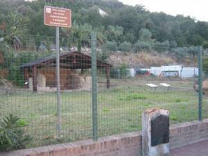 cupramarittima -archeologia