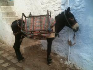 Giro del mondo - Marocco (2)