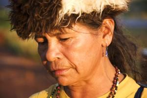 Damiana guarana Survival