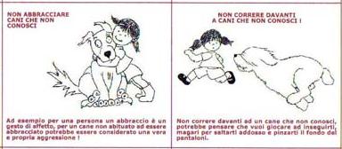 Animali: non baciare il can che dorme, regole per non farsi mordere