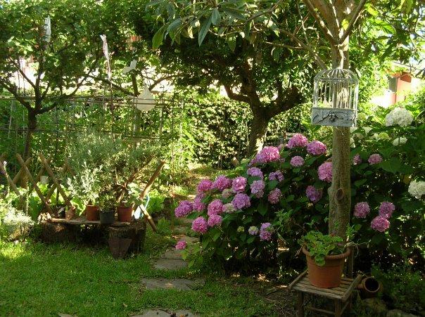 Orti in città i ortensie e pomodori nel giardino di casa il