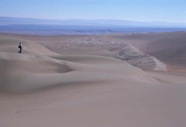 cerco donne antofagasta annunci contatti perù