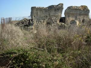 Malvindi-Puglia