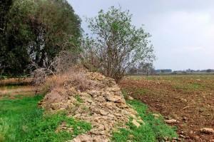 Muro-Maurizio-Puglia