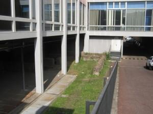 Biblioteca-Roma-Lilli-3