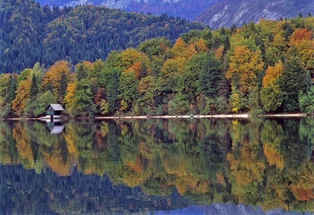 lago di bohinj, slovenia - Foto di Vittorio Giannella